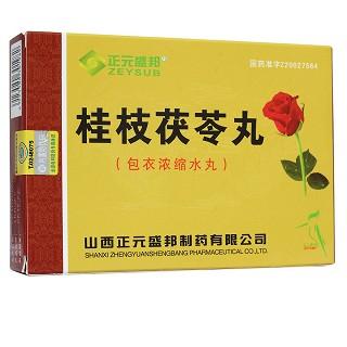 正元盛邦 桂枝茯苓丸 1.5g*81丸
